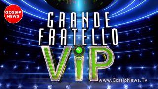 gf vip news