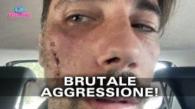 vittorio brumotti news